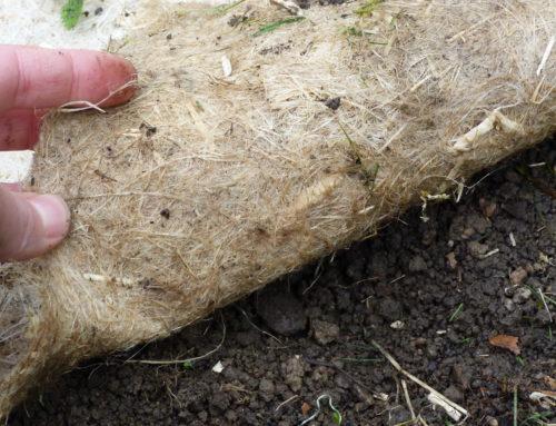 Un paillage compatible avec la permaculture
